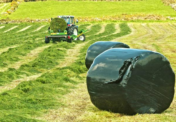 silage making Donaghys' utility silage covers are designed for grass silage applications manufactured using the 7 layer smartstructure™technology to provide long term protection, these covers are less likely to tear or puncture during the handling or covering operation making them tougher and stronger than other traditional grass covers.