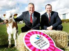 Farmers Journal weekly podcast: spring breeding and focus on Northern Ireland