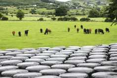 How much does silage plastic cost across the country?