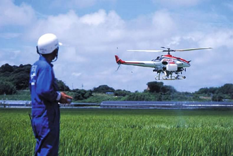 One third of all rice consumed by Japanese families has been sprayed with agricultural pesticides using Yamaha drones.