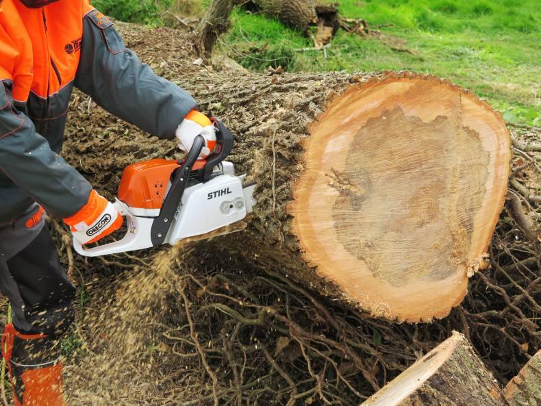 The Stihl MS391 in action.