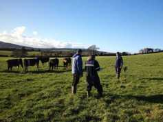 High grass covers and slurry a growing issue