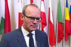 No payment for Irish farmers to cut milk production - Coveney