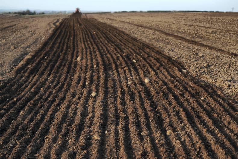 Soil fertility holds key to reseeding success 07 april for Fertile soil 07