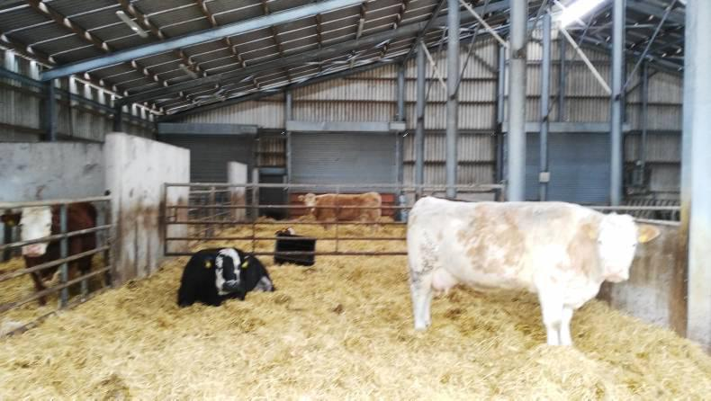 In Pictures Irish Farm Buildings Association Tour 04 May