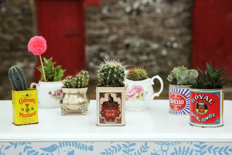 Joanne Condon's upcycled pots for succulents and cacti. Photo: Donal O' Leary