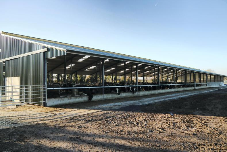 1. The shed is 13 bays long (79m) in total.