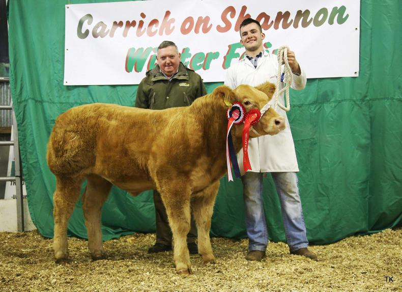 Junior Charolais champion from the Maxwell brothers.