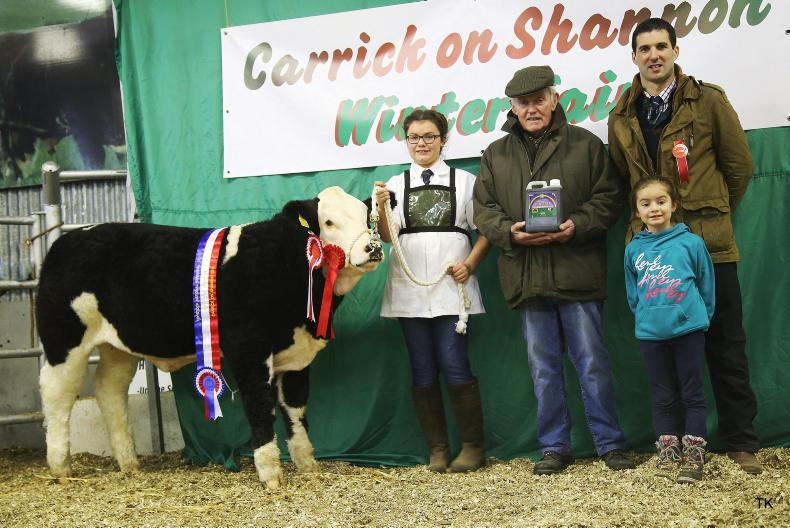 Simmental champion from Sarah Murray, PJ Farrellely and judge Alan Veitch.