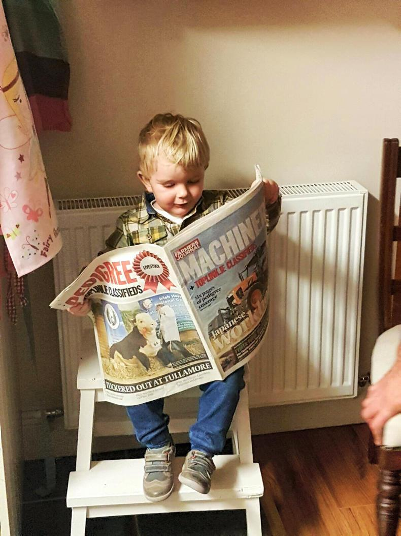 READER'S PIC: Andrew Nicholson sent us this photo of his 16-month-old son Charlie Nicholson from Youghal, Co Waterford, trying to decide wether to check out the pedigree or the machinery feature! You can send your photos to us at readerspics@farmersjournal.ie or Tweet us @IFJ_picturedesk.