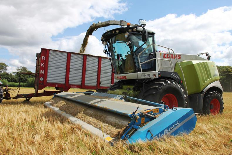 A number of Danish contractors are pairing forage-harvesters with stripper-headers to crimp grain without using a combine or crimper.