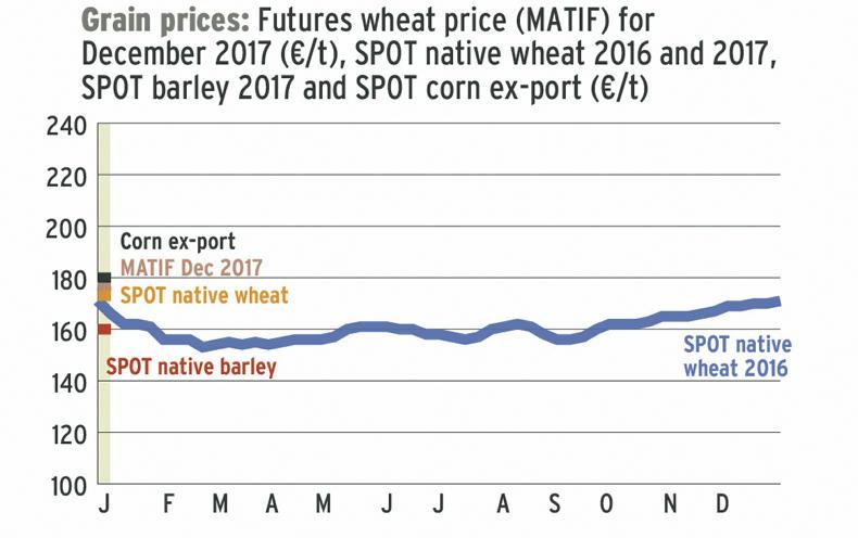 chicago board trade grain prices