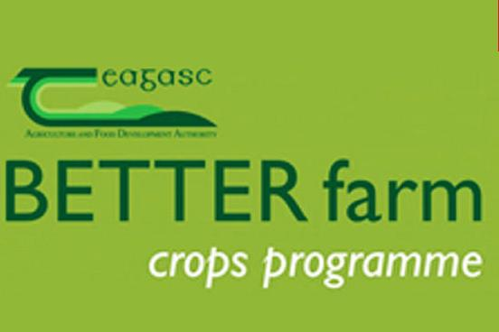 BETTER FARM logo