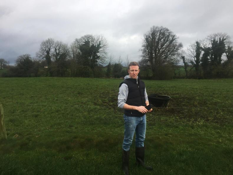 Oisin Gill, Hollymount, Co. Mayo sold his low EBI cows to buy high EBI cows.