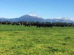 Listen: New Zealand farmer on the 'brutal subsidy removal'