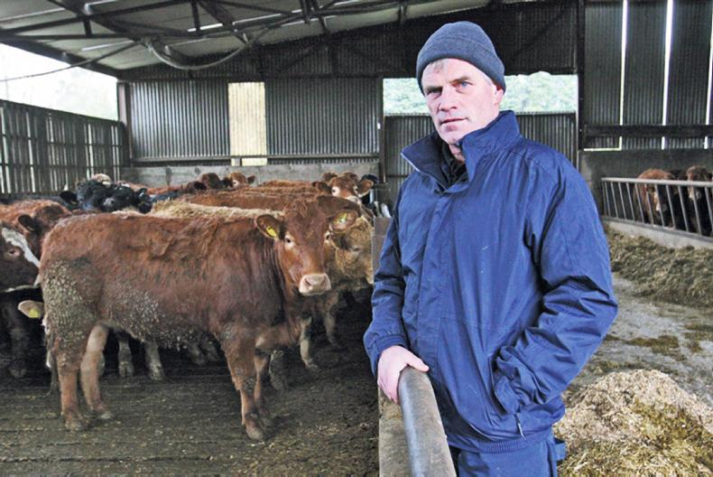 Paul Barden on his farm at Donooney, Adamstown. A bought-in heifer caused BVD devastation of his suckler herd in 2014.