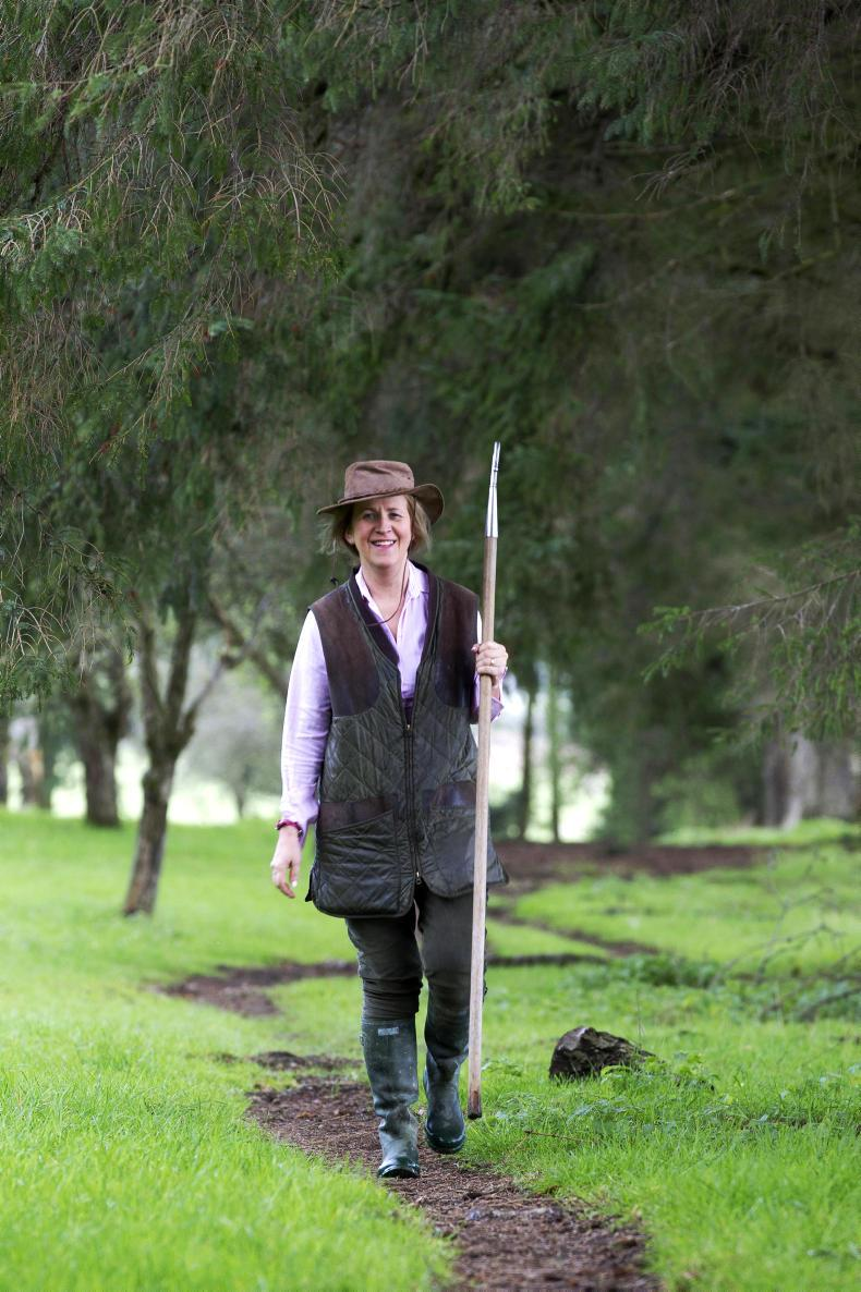The Lamb Lady, Margaret Hoctor on her farm in Co Wicklow with some of the flock.