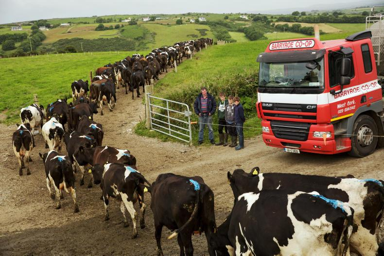 Barryroe Co op milk lorry driver Tim Sheehy, South Ring, Clonakilty stops to chat with Michael, Florence and Geoffrey Wycherley as they leave out the cows after milking on their father's farm at Lislevane, Barryroe, Co. Cork. Photo: Donal O' Leary