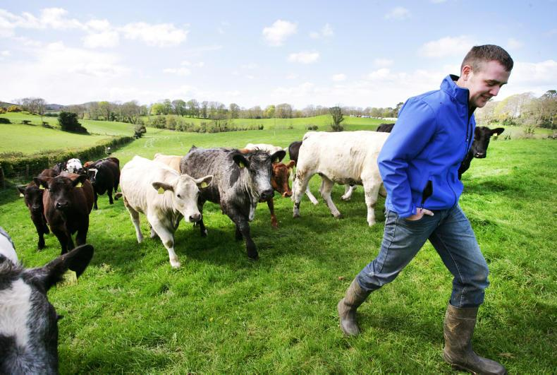 online dating farmers ireland Farmers is 34 year old male from tipperary,ireland connect with farmers today on ireland's largest online dating website - anotherfriendcom.