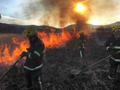 Farmers must amend BPS applications where illegally burnt land has been included
