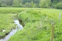 GLAS countdown: protection of watercourses from bovines