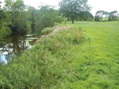 GLAS countdown: what you need to know about riparian margins