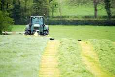 Monday management: first-cut silage begins in earnest