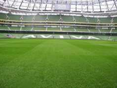 The Irish business producing enough ham to cover more than 5,000 Aviva pitches