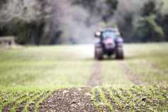 Optimising fertiliser use with sensor technology