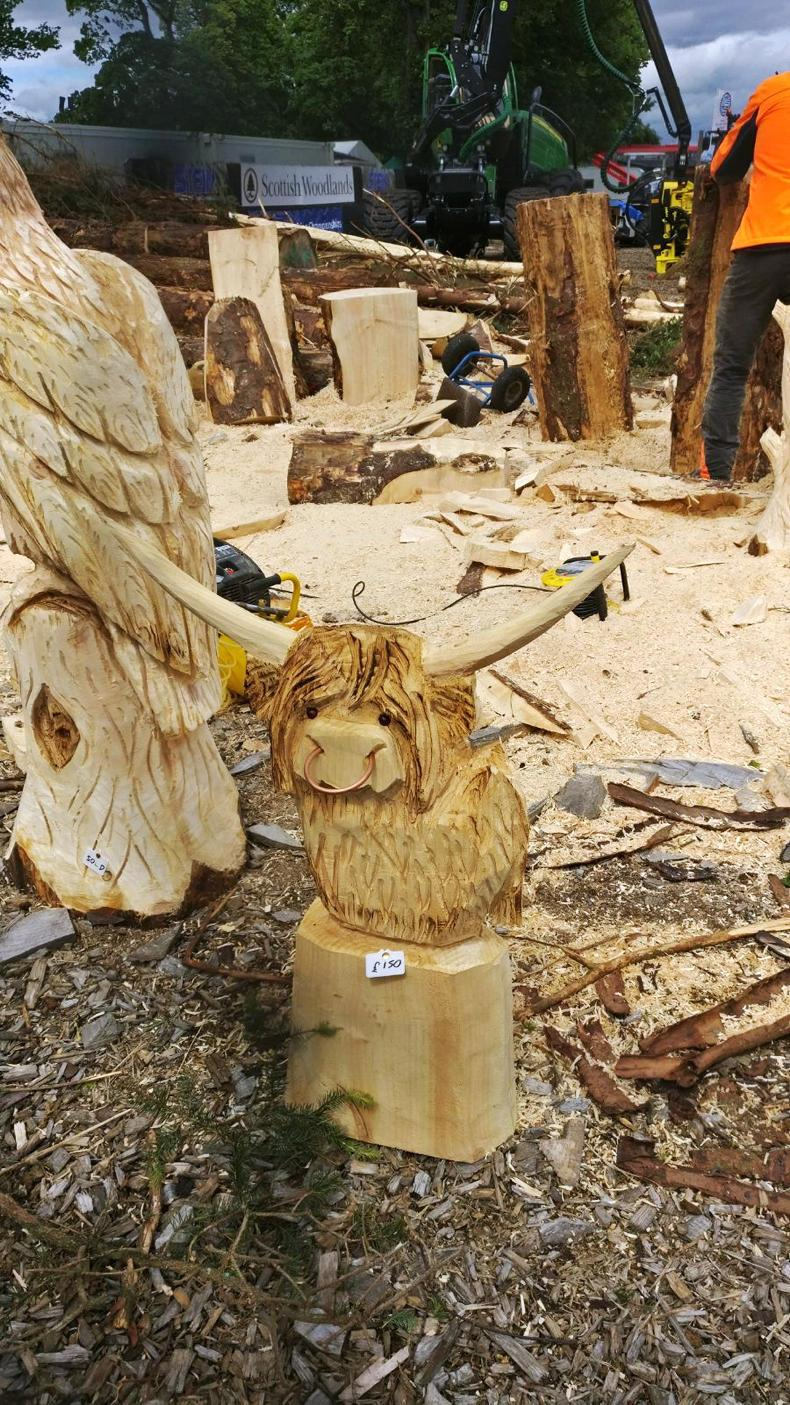 In pictures chainsaw carving at the royal highland show