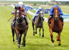 Mixed results for O'Brien at Newmarket