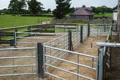 National open day on Tullamore Farm