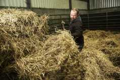 Straw prices remain strong nationwide