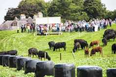 Weekly podcast: Tullamore Farm open day and Carnaross mart sale