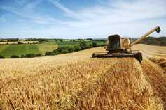 More to catch crops than GLAS