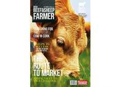 NEW Beef and Sheep Farmer magazine out now!