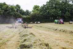 World record attempt by female silage crew on Saturday