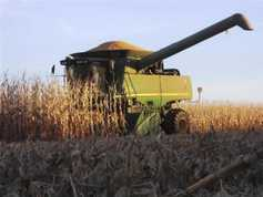 US midwest crop tour did not lower yield expectations