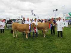 Focus on AI at the Aubrac society stand