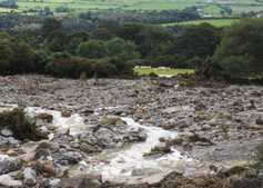 DAERA to cover fallen stock costs for flooded farms in NI