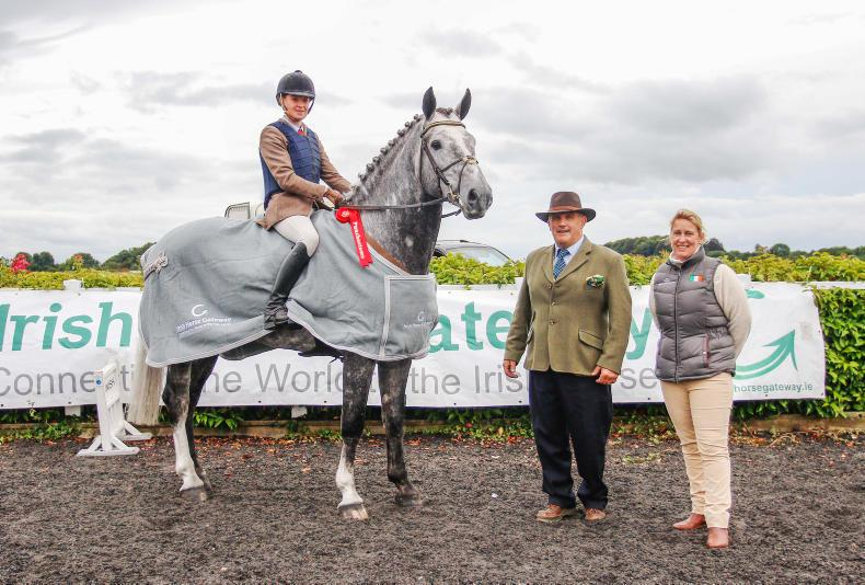 Linda Murphy on board Gortfree Lakeside Lad, winner of the Irish Horse Gateway National Irish Draught performance final. Also pictured is Jack Murphy, chair of Horse Sport Ireland's Breeding sub-board, and Elaine Hatton, marketing director of HSI Photo: Siobhan English