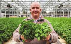 20 minutes with Tom O'Hanlon of O'Hanlon Herbs