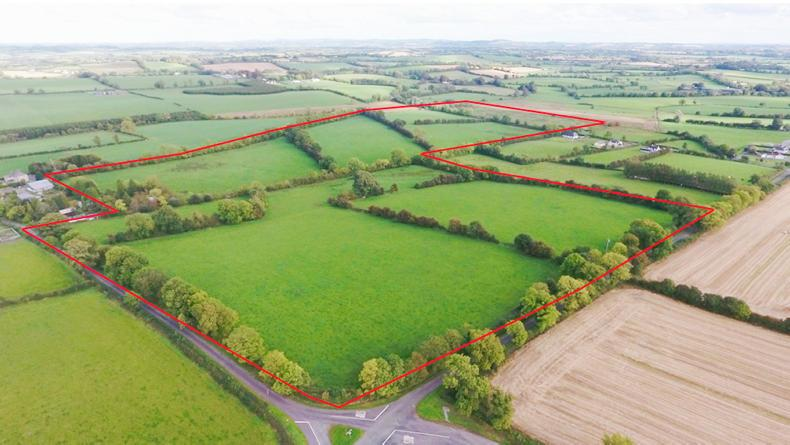 This 68 acres in Kilbeg, Carlanstown Co Meath sold for €730,000