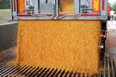 Grain prices largely static despite weaker futures