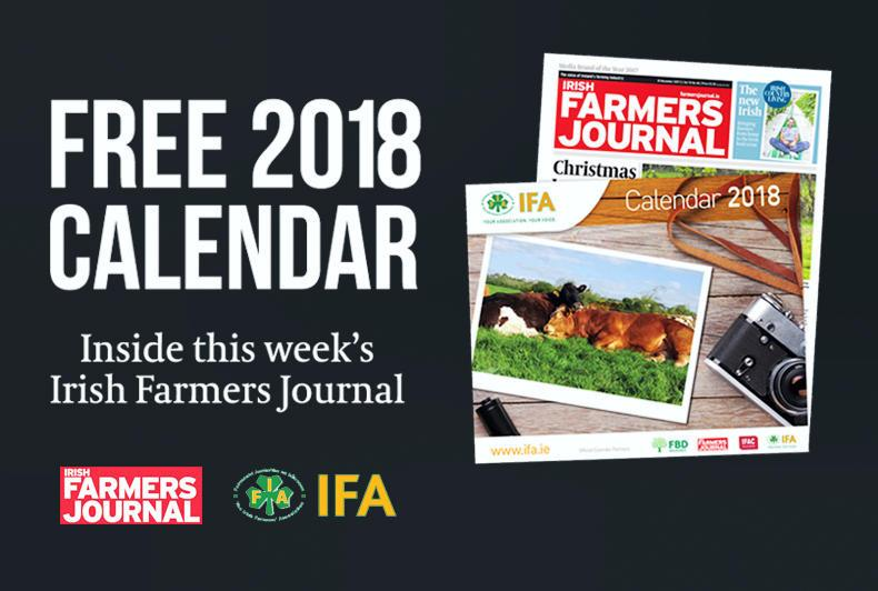 Irish farmers journal dating