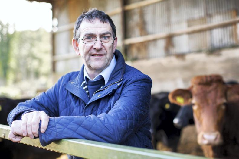Pat Farrell has been elected as the new IFA animal health chair.