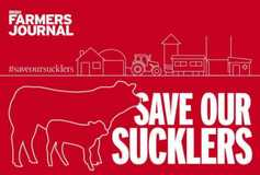 Save our Sucklers campaign gains momentum
