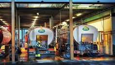 Arla buys Yeo Valley Dairies