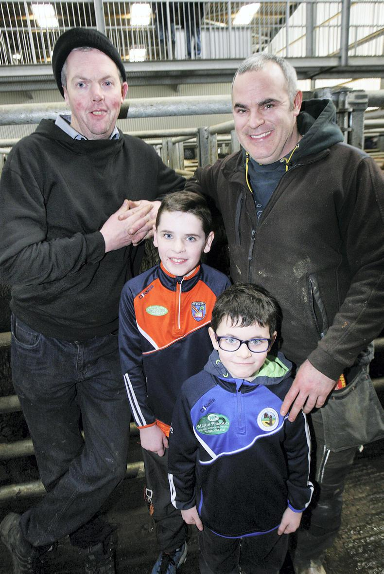 Odhran and Daithi Carnegie, their father Sean and Michael O'Hagan, all from Drumatee, at the cattle sale at Markethill. \ Houston Green