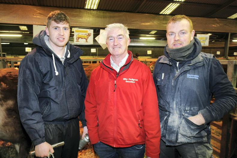 Frank McAuley, Toomebridge, Barclay Finnegan, Dungannon and PJ Donnelly, Eglish at the spring show and sale of Limousin cattle at Dungannon. \ Houston Green